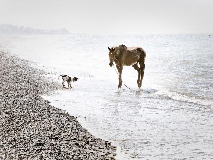 Morning in Milos beach