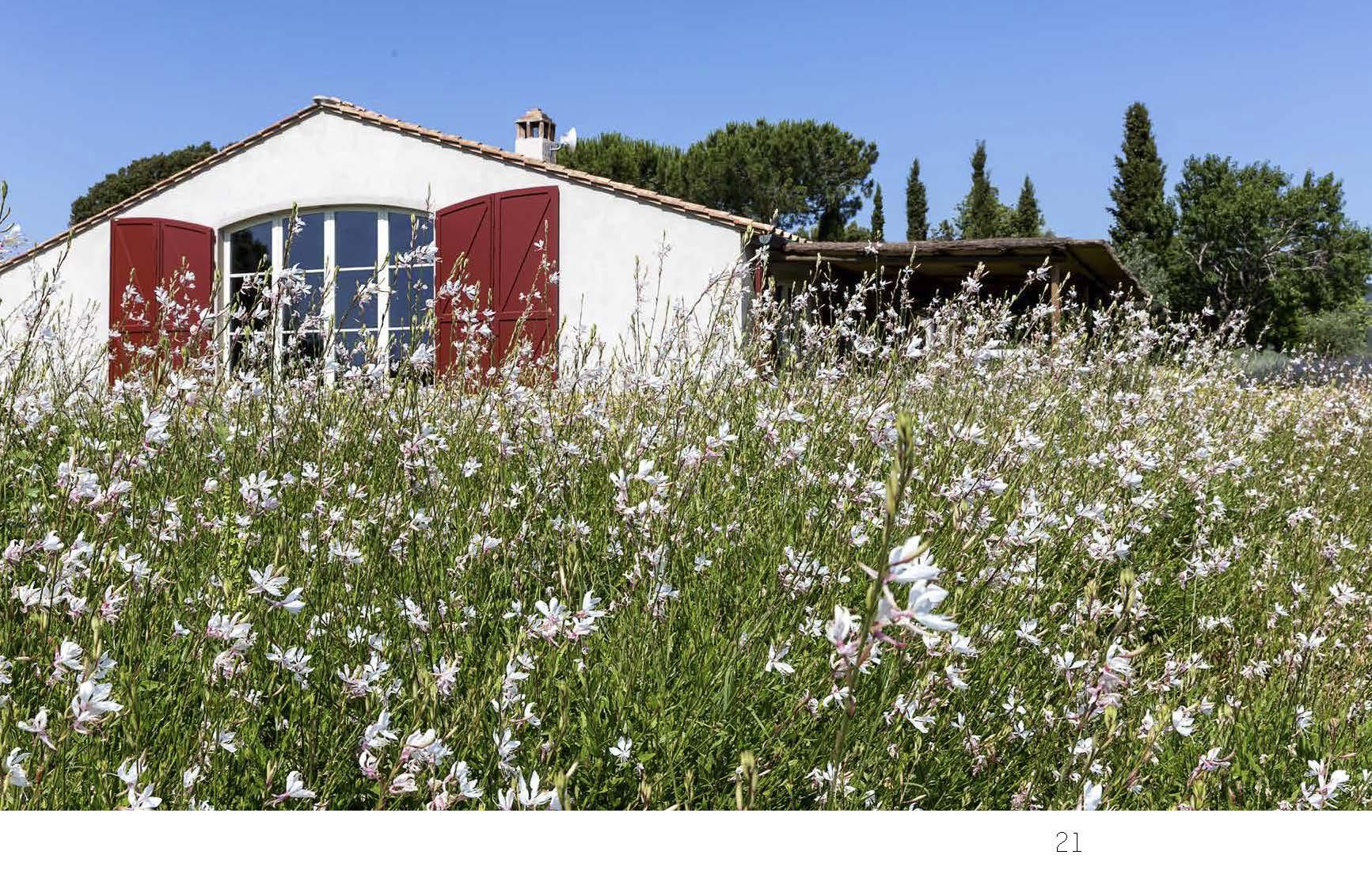 Casa di Bolgheri esterni in fiore foto Francesca Anichini